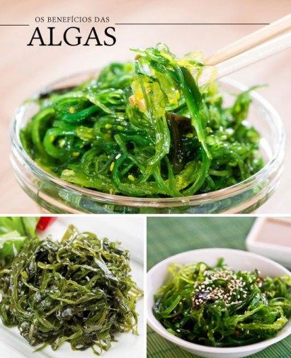 alimentos tipoide algas1.jpg