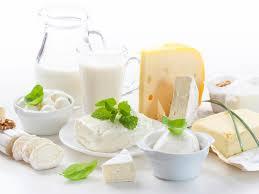 alimentos tipoide leite e derivados